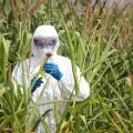 Monsanto to be Sued for Crimes Against Humanity