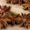 Spices - Star Anise