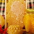 Other Food Ingredients - Royal Jelly