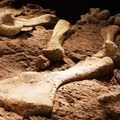 Excavations - The most important Archeological finds of the XXI century