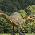 Paleontology - A New Species of Dinosaur Has Been Discovered