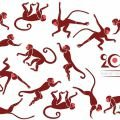 Chinese New Year - What to Wear for Luck in the Year of the Fire Monkey