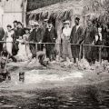 Ancient World - Human Zoos - a Shameful Stain in Human History