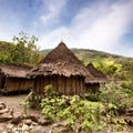 Isolated from the world Indian tribe lives in timelessness