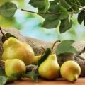 Pears - the New Superfood