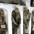 The Mummies and Catacombs of Palermo
