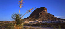 Big Bend -  Big Bend National Park