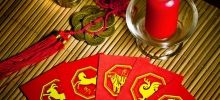 Year of the Tiger 2013 - Feng Shui Horoscope 2014 for the Dog