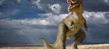 Dreaming of chipped tooth - Dinosaurs were cannibals