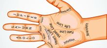 Meaning of Moles on Fingers - Palmistry - Meaning of the Line of Marriage