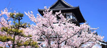 World's castles , Page 4 -  Inuyama Castle