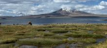 Parks of the world , Page 3 -  Lauca National Park