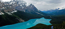 Lakes - World's most beatiful lakes -  Peyto Lake