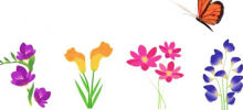 Mysteries24 - Pick a Flower! Find out What you`re Like in Love