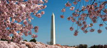Tourist Attractions and Sightseeing -  Washington Monument