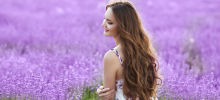 Mysteries24 - Magical Properties of Lavender you Would Have Never Suspected