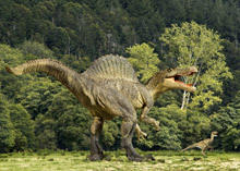 A New Species of Dinosaur Has Been Discovered