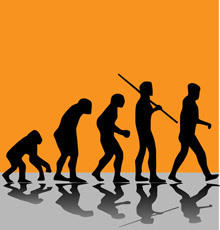 The Most Curious Facts about Human Evolution