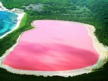 The Mystery of the Pink Lake Hillier
