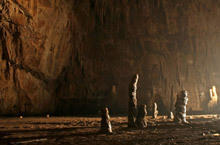 Giant bones discovered in a cave in Bavaria