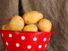Five Ways to Boil Potatoes