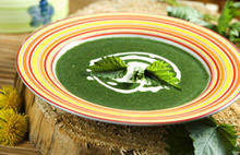 Florentine Spinach Soup