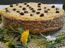Cake with Vanilla Cream and Walnuts