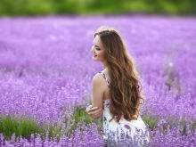 Magical Properties of Lavender you Would Have Never Suspected