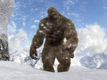 Mushroom Picker Tells of his Encounter with a Yeti
