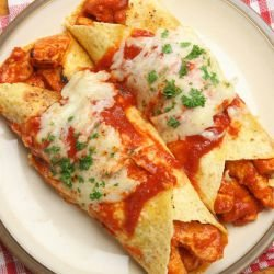Enchiladas with Chicken Meat