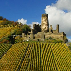 Castles on Rhine -  Furstenberg Castle