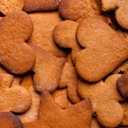 Ginger Cookies with Cocoa