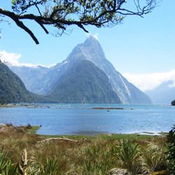 Fiordland National Park -  Milford Sound
