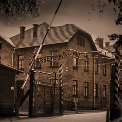 Larimer County - Concentration Camp Auschwitz