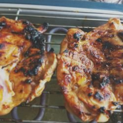 Chicken Steaks with Honey Marinade