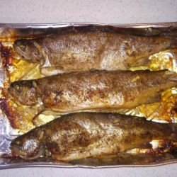 Trout in a Tasty Sauce
