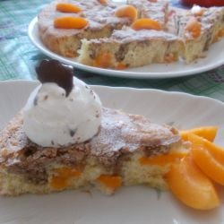 Retro Cake with Apricots