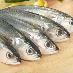 Mackerel with Parsley and Tomato Sauce