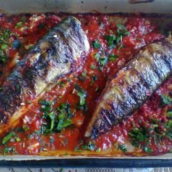 Mackerel in Tomato Sauce