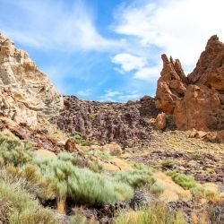 Glen Fiddich - Teide National Park