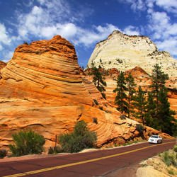 Germany - Zion National Park