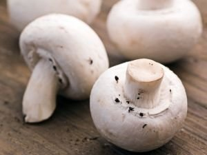Leave your Champignons in the Sun for 1 Hour Before Cooking