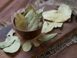 Cleanse Your Body with Bay Leaf
