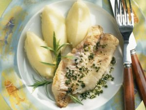 Five Recipes for Fish Fillets
