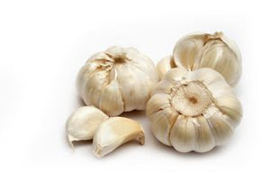 old garlic