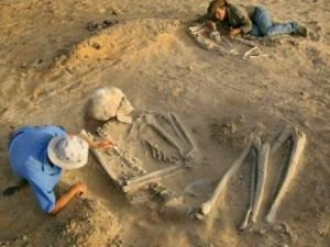 US Scientists Have Destroyed Thousands of Giants' Skeletons