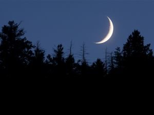 New Moon in Scorpio - Time to Make our Wishes Reality