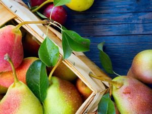 Eat More Pears to Remain Youthful