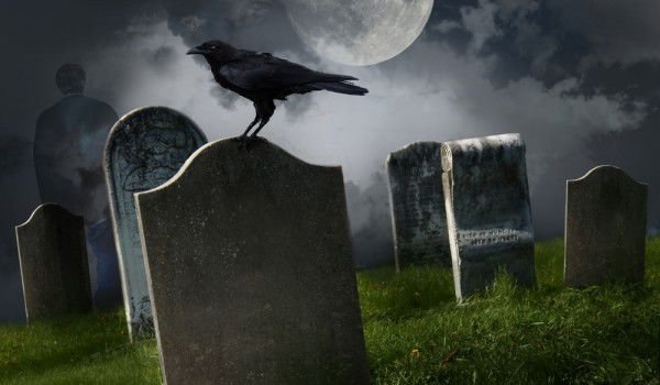 Crow at Cemetary