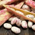 Borlotti Beans - Tasty and Dietary